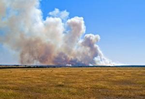 bushfire_wideweb__470x3230