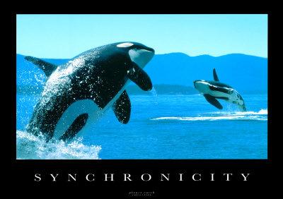 http://kenoath.files.wordpress.com/2009/07/synchronicity.jpg